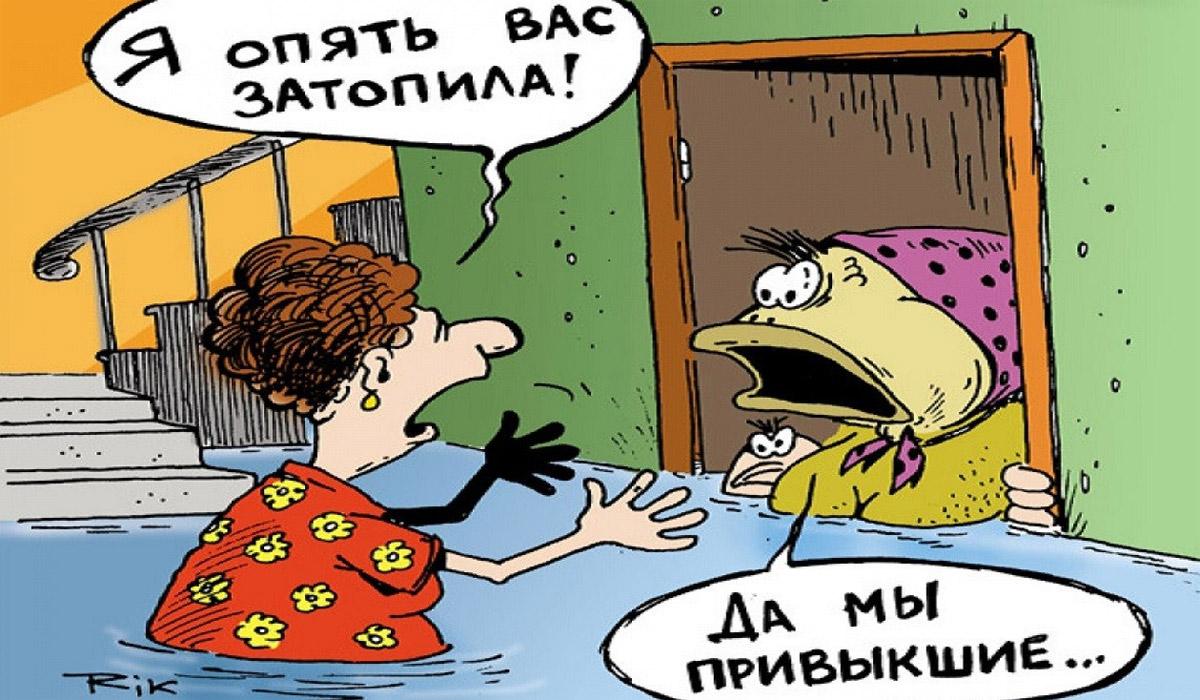 соседи залили, карикатура
