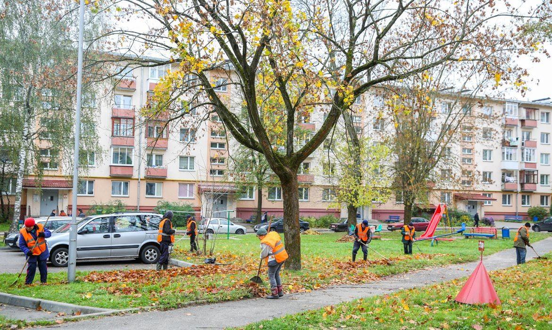 уборка дворов и подъездов