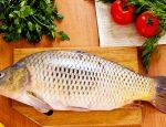 рыба свежая